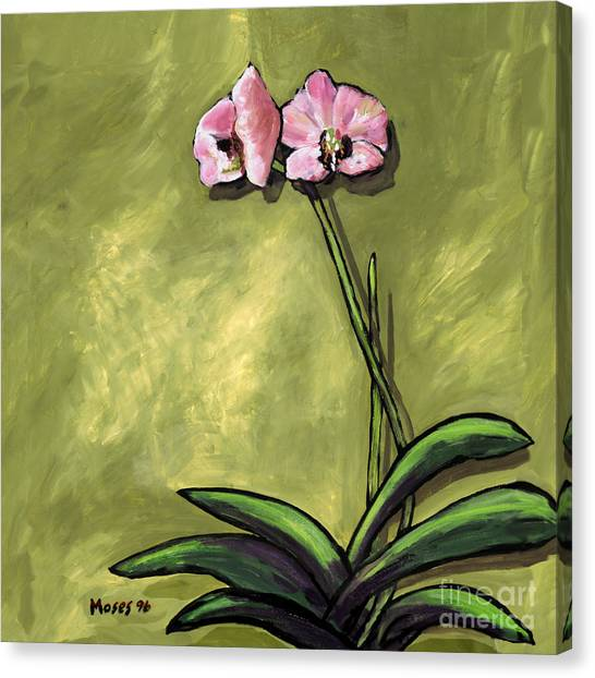 Orchid On Olive Canvas Print