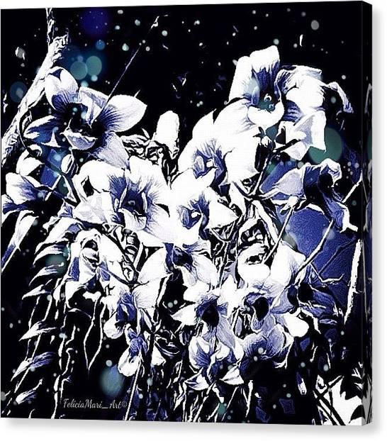 Pencils Canvas Print - ✨orchid Winter Wonderland✨ by Felicia Luxama