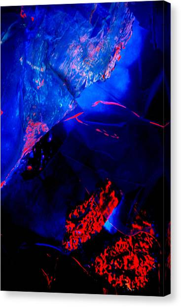 Origins Canvas Print by Colleen Cannon