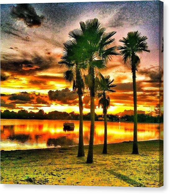 Palm Trees Sunsets Canvas Print - #orlando #orlandofl #mytravelgram by Crystal Duncanson
