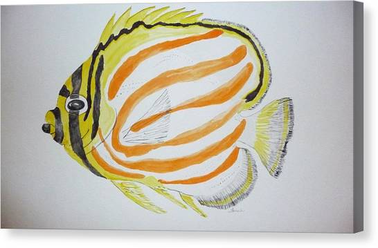 Ornate Butterfly Fish Canvas Print by Tim Forrester