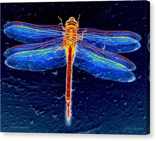 Ornate Odonata Canvas Print