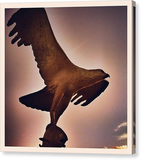 Osprey Canvas Print - Osprey Sculpture, Spey Bay, Scotland by Robert Campbell