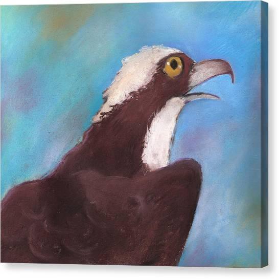 Osprey Canvas Print by Susan Herbst