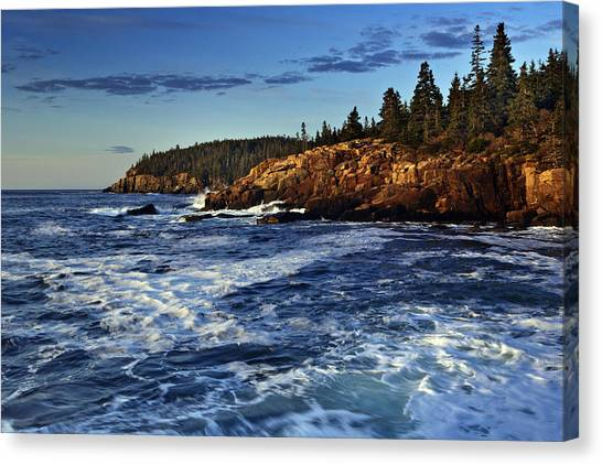 Otters Canvas Print - Otter Cliffs by Rick Berk