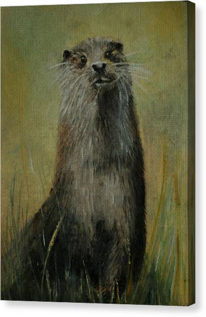 Otter  Miniature Canvas Print