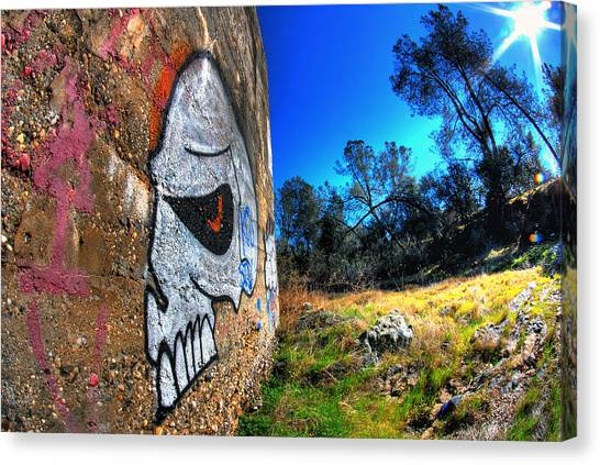 Graffiti Walls Canvas Print - Outdoor Skull by Tom Melo