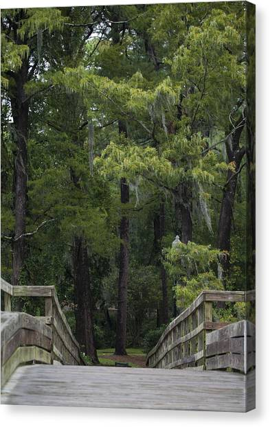 Over The Bridge Canvas Print by Christina Durity