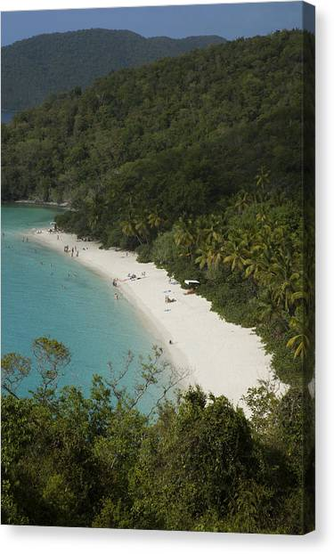 Overhead Of Trunk Bay Canvas Print by Margie Politzer