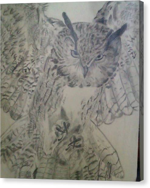 owl Canvas Print by Jamie Mah