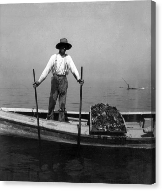 Oyster Fishing On The Chesapeake Bay - Maryland - C 1905 Canvas Print