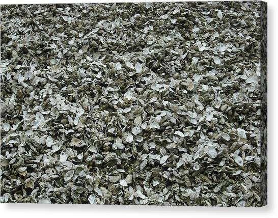 Oyster Piles In Oysterville Canvas Print