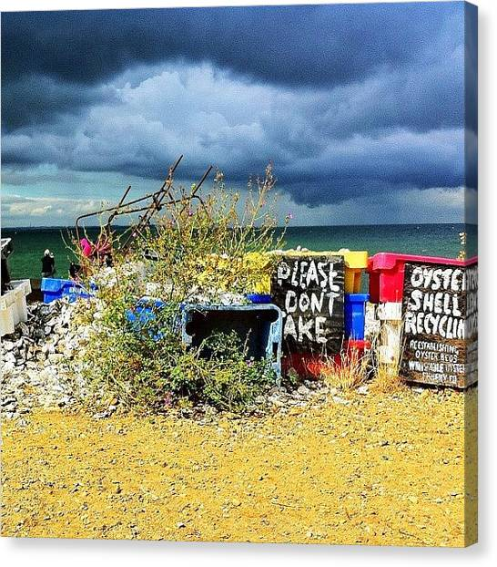 Ocean Animals Canvas Print - #oyster #whitstable #england #seaside by Samuel Gunnell