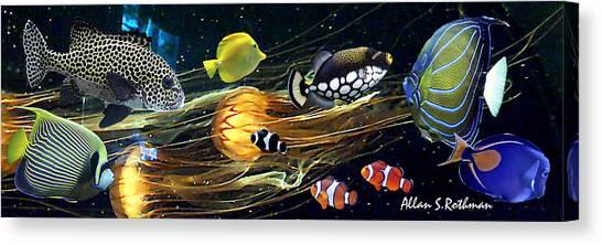 Pacific Coast Fish Canvas Print