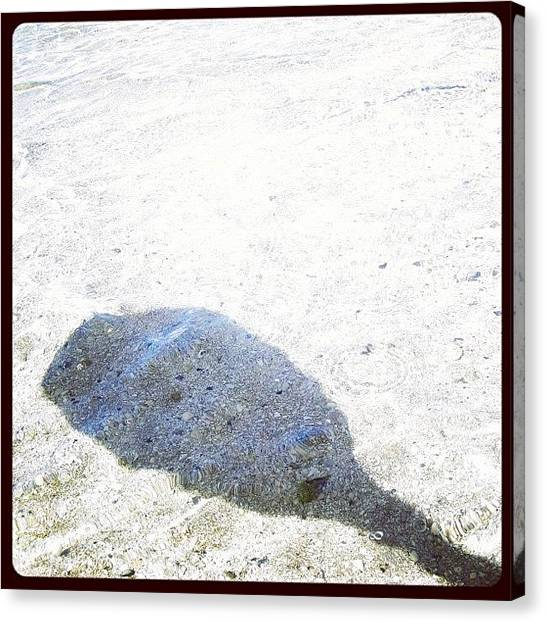 Indian Canvas Print - #paddle #shadow #shells #sandbar by Michael Hughes