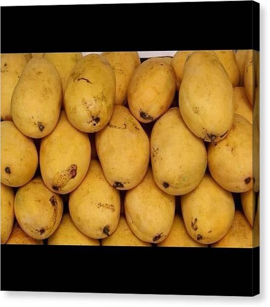 Mangos Canvas Print - Pakistani Mango #pakistan #mango #food by Muhammad Tahir