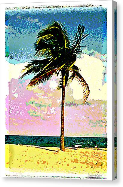 Palm One Canvas Print by Linda Olsen