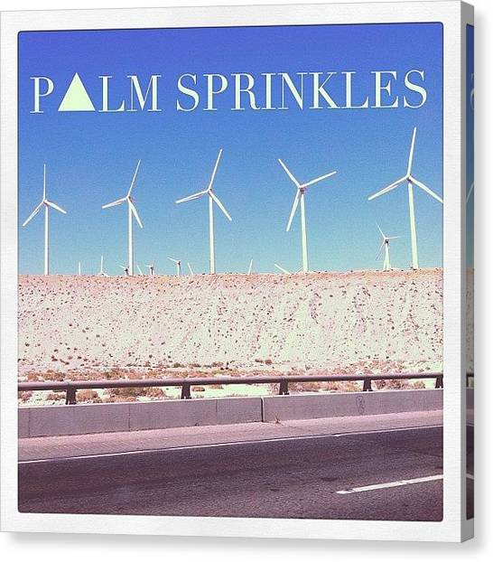 Mermaids Canvas Print - Palm Sprinkles by Mermaid Lifee