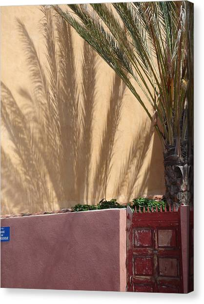 Palm Tree Shadow Canvas Print by Christopher Mullard