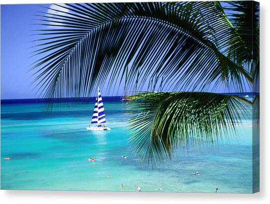 Hawaii Canvas Print - Palm Tree, Swimmers And A Boat At The Beach, Waikiki, United States Of America by Ann Cecil