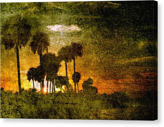 Palm Trees Sunsets Canvas Print - Palm Trees In Florida by Skip Nall