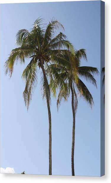 Palm Trees In Love Canvas Print by Natalija Wortman
