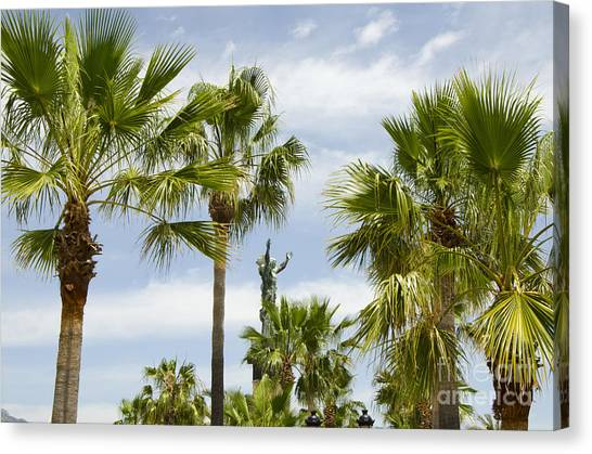 Palm Trees In Spain Canvas Print by Perry Van Munster