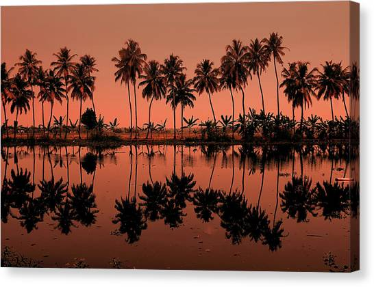 Palm Trees Sunsets Canvas Print - Palm Trees Reflection by © Arvind Balaraman