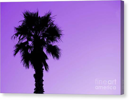 Palm With Violet Sky Canvas Print