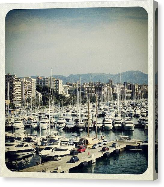 Yachts Canvas Print - Palma Bay by Louise Teolis