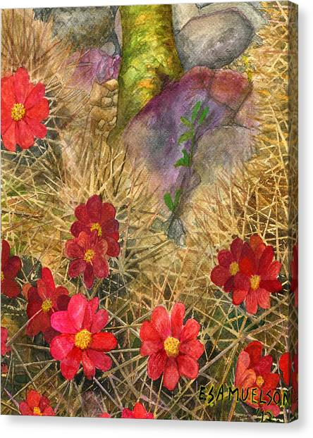 Palo Verde 'mong The Hedgehogs Canvas Print
