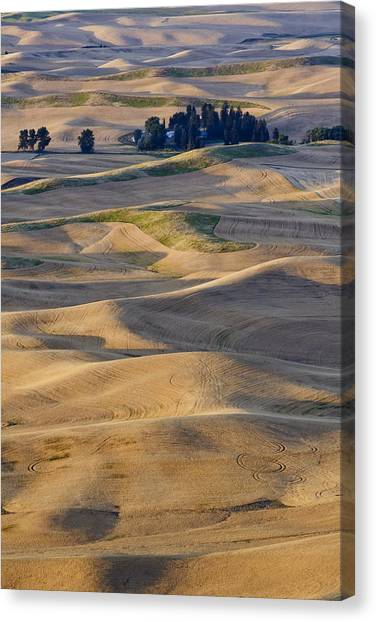 Palouse Harvest Canvas Print