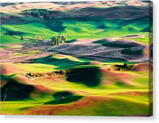 Palouse Hills 3 Canvas Print
