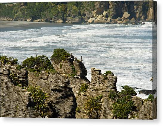 Pancake Rock Formations Canvas Print by Graeme Knox