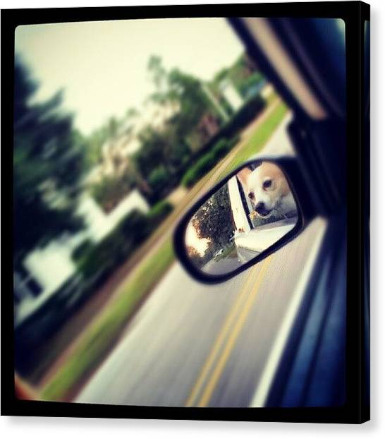 Driving Canvas Print - Papa ! by Mandy Shupp