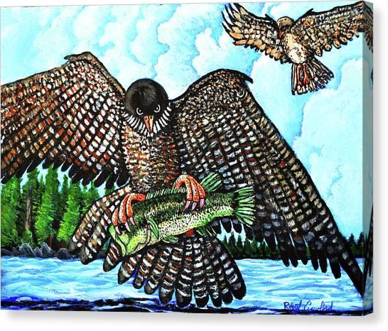 Paragon Falcon Canvas Print by Bob Crawford
