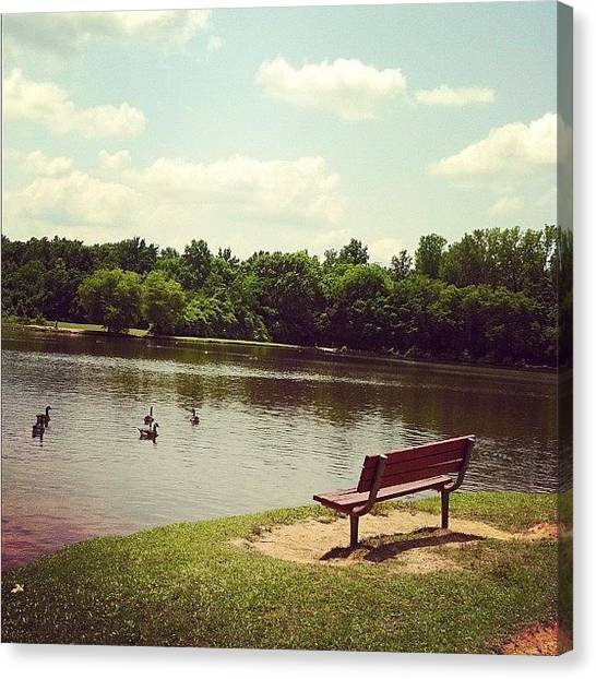 Geese Canvas Print - Park Bench by Lori Lynn Gager