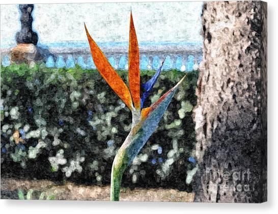 Park Flower Canvas Print by Slavi Begov
