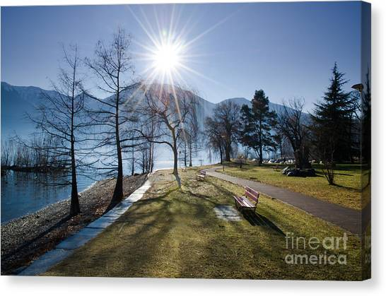 Park On The Lakefront Canvas Print