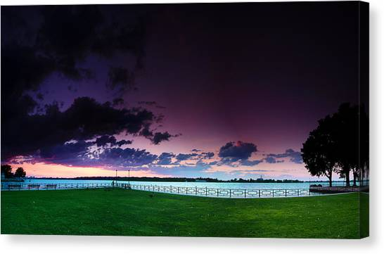Canada Goose Canvas Print - Park Pano by Cale Best