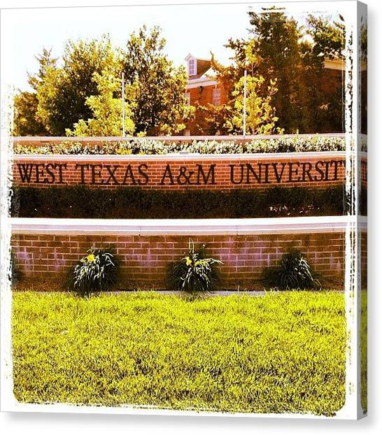 Texas A Canvas Print - Part Of My Afternoon Jog! #texas #a&m by Patrick Brazell