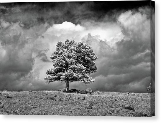 Canvas Print - Passing Storm by G Wigler