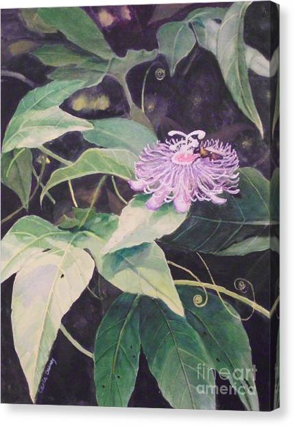 Passion Flower Canvas Print by Carla Dabney