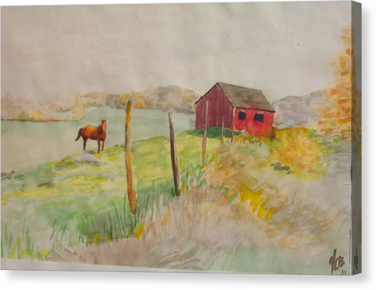Pasture In Lagrangeville Canvas Print