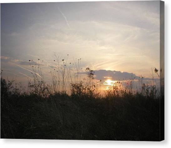 Pasture Sunset Canvas Print