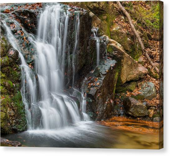 Patapsco Water Falls Canvas Print