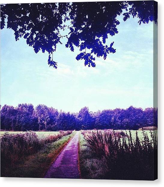 Forest Paths Canvas Print - Path To A Happy Mind by Chrit Werdmolder Smeets