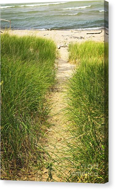 Grass Canvas Print - Path To Beach by Elena Elisseeva