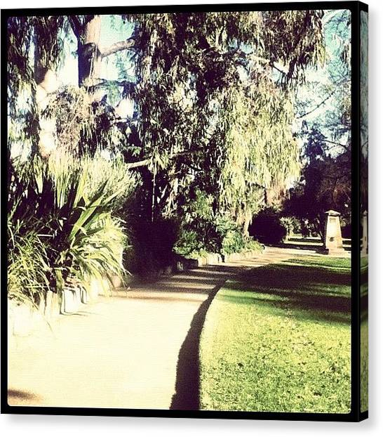 Pathway Canvas Print - Path #trees #tree #pathway #gardens by Ryan Evans