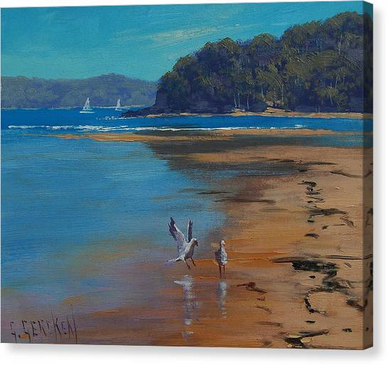 Seagulls Canvas Print - Patonga Beach Australia by Graham Gercken